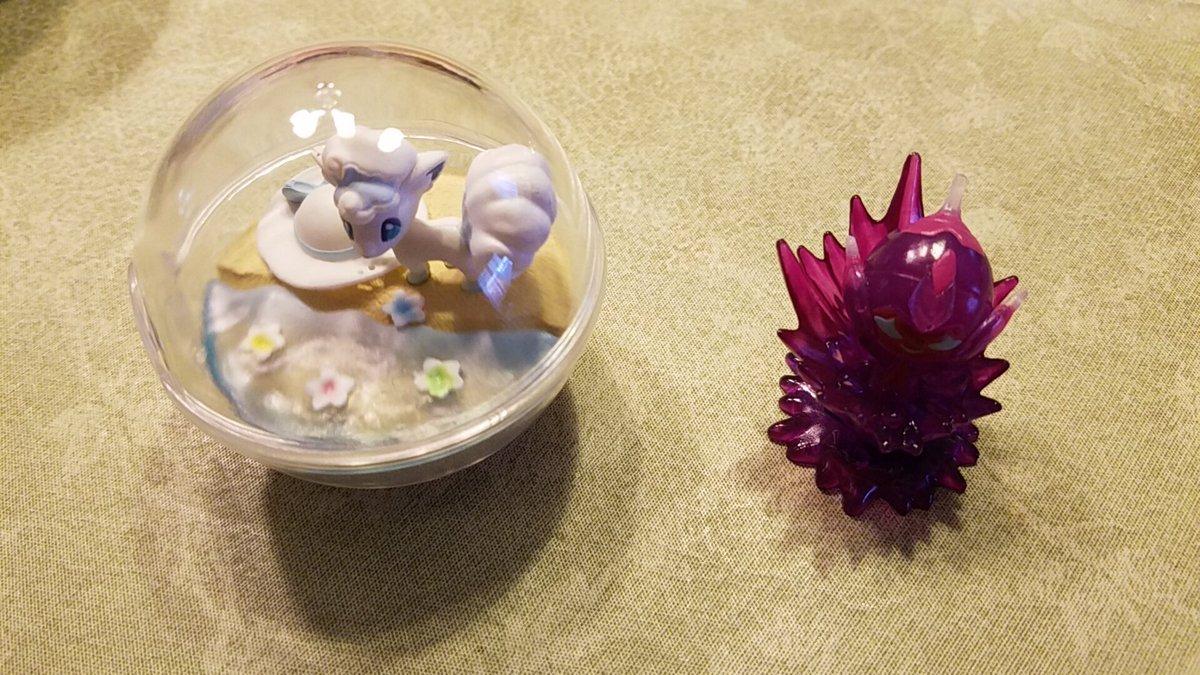 ポケットモンスター サン&ムーン テラリウムコレクションEX ~アローラ地方編~に関する画像13