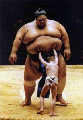 "Green Pepper sur Twitter : ""ちなみにお相撲さんの体型を表す「アンコ ..."