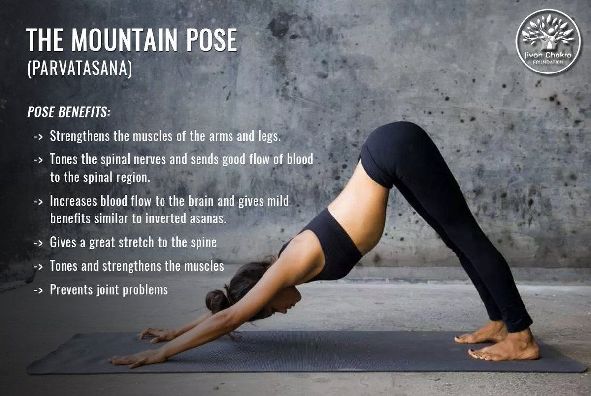 Mountain Pose Picture