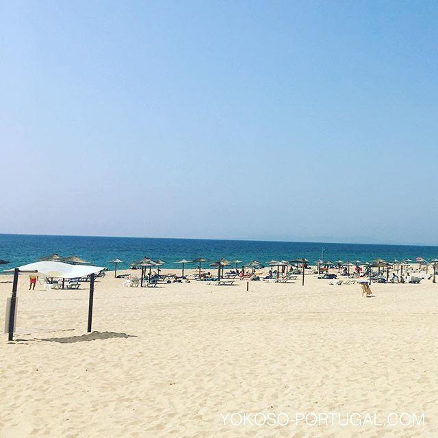 test ツイッターメディア - ポルトガルは、すっかり夏モードでビーチのシーズンになりました。 #ポルトガル #ビーチ https://t.co/vFwyo9Yg63