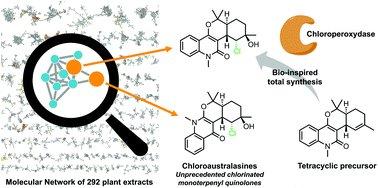 Methods in Bioengineering: