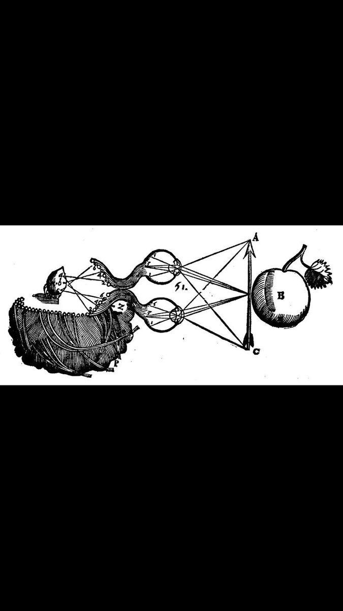 физическая химия ч1 физическая термодинамика текст