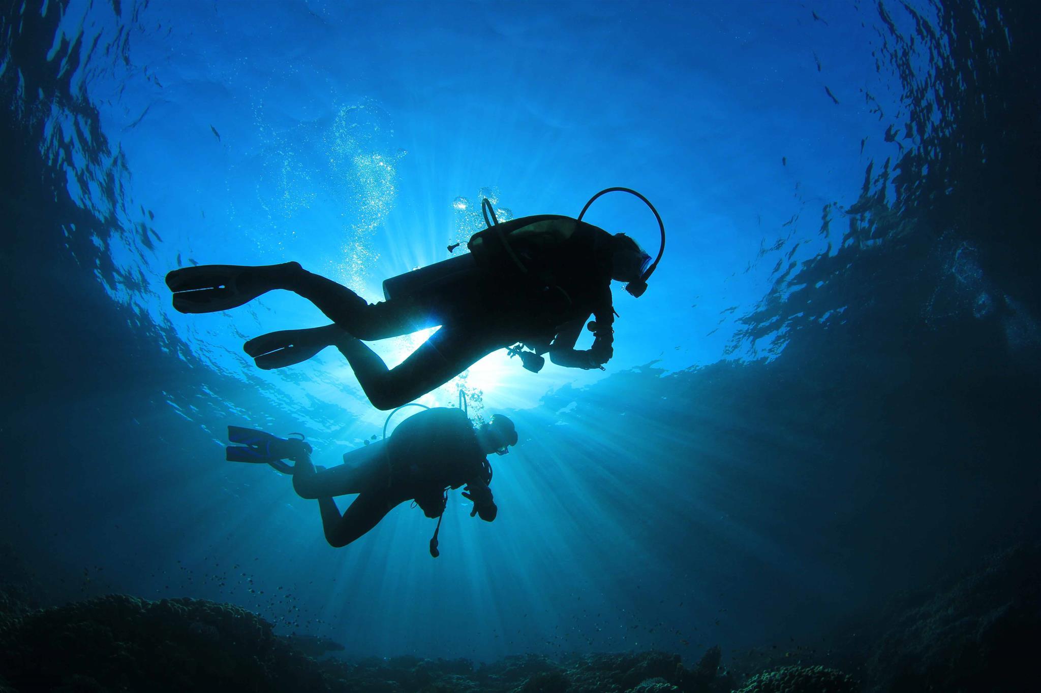 давно стали подводные фотографии водолазов сша заканчивается