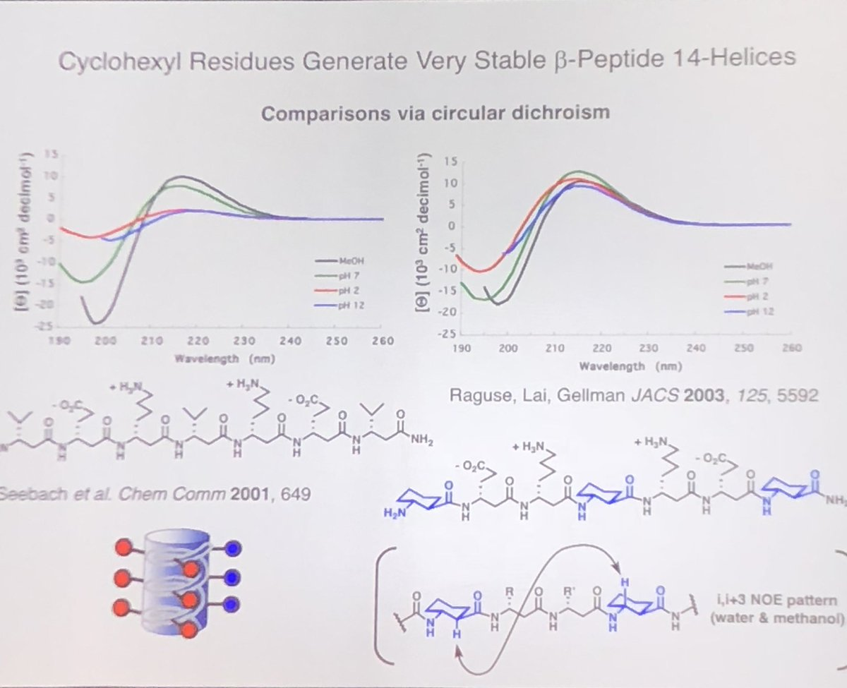 Physikalische Biochemie: Grundlagen der physikalisch chemischen Analyse biologischer Prozesse