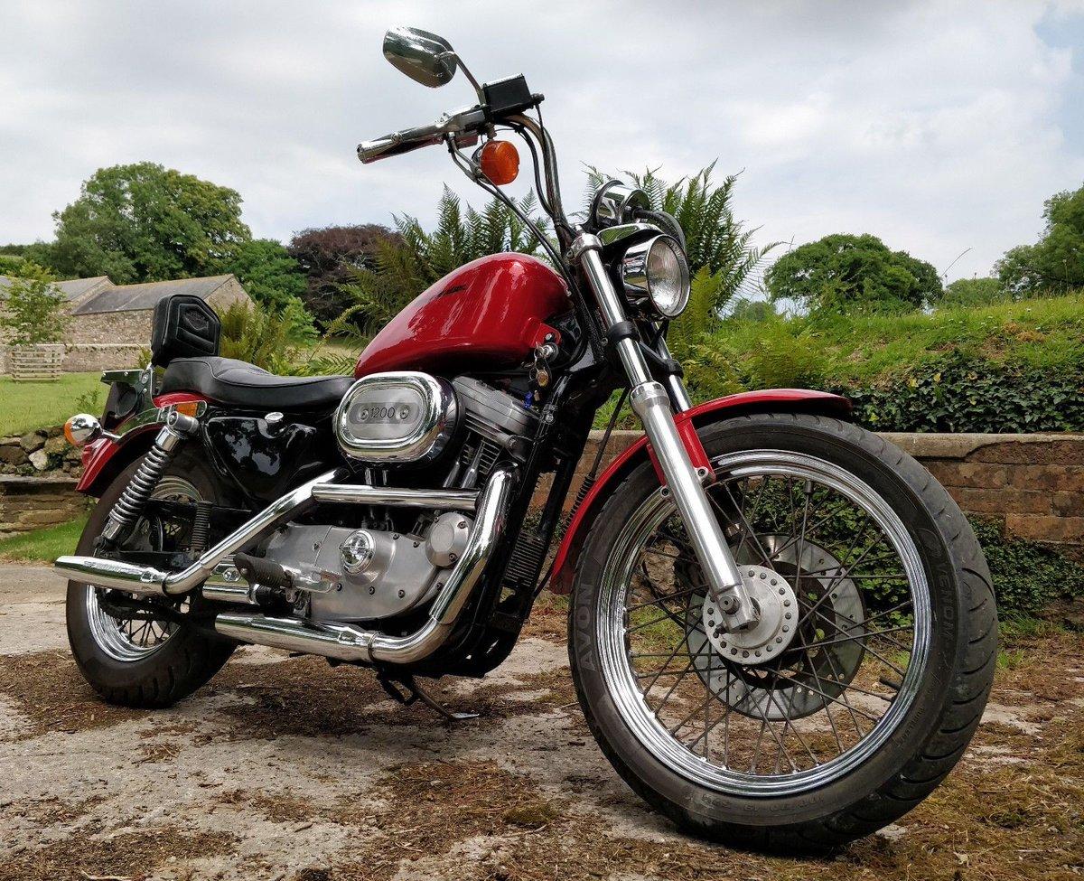 UK Harley Sales On Twitter EBay 92 HARLEY DAVIDSON SPORTSTER