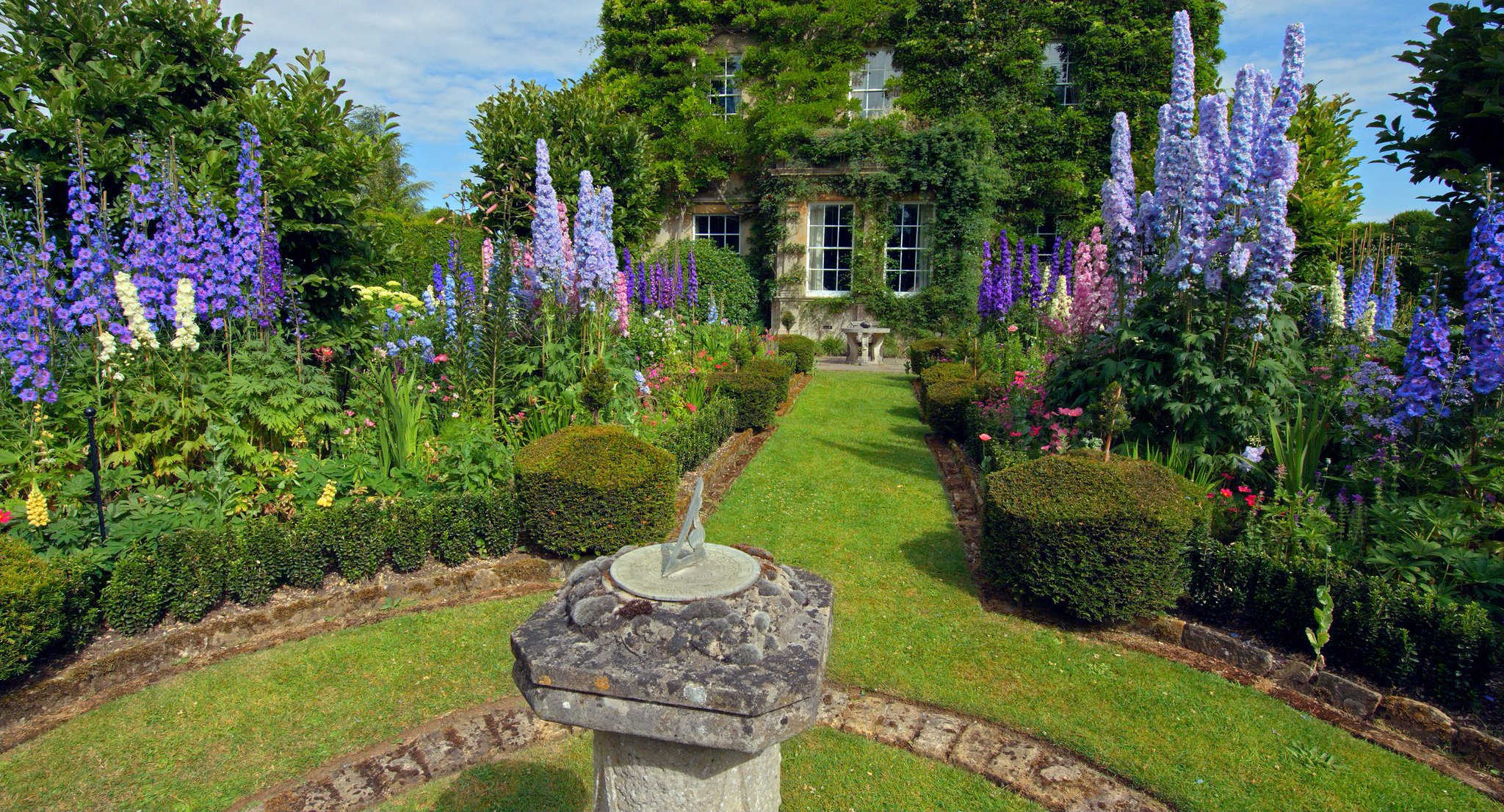 "highgrove gardens on twitter: ""this month the delphiniums"