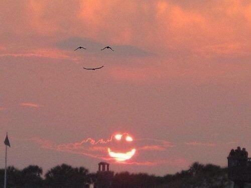 When the sun smiles, the birds smile back! https://t.co/npghig6LAN
