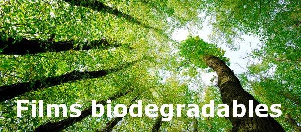 test Twitter Media - CVBIO, el #envaseflexible que combina la imagen tradicional y natural proporcionada por el papel, con la conservación aportada por el film biodegradable, consiguiendo un material sostenible y respetuoso con el medio ambiente. https://t.co/I0GjHO5vvl #bedifferent #begreen https://t.co/cqyEx6RbVW