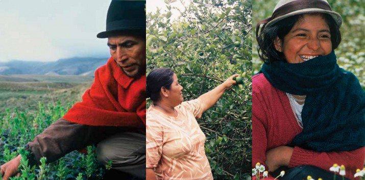 Agricultura Ecuador's photo on Ruben