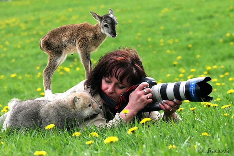 @lamedalico そういうのを追加で出そうと思ったけれど残りはアシスタントではなくメインカメラマンとしての写真が多かった