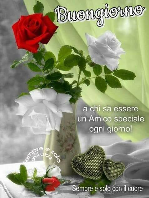Piera Toninelli On Twitter Buongiorno Di Cuore