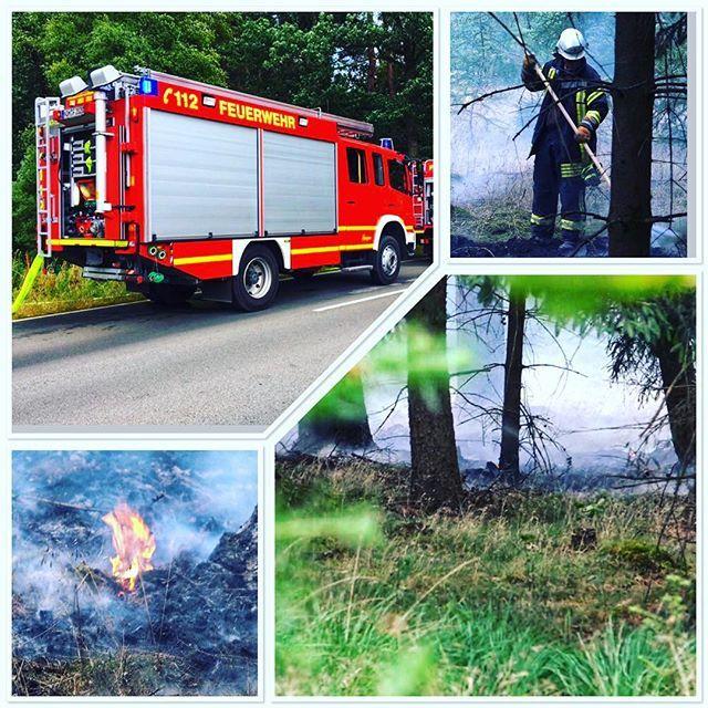 test Twitter Media - #feuerwehr #nordhorn #feuerwehrnordhorn #grafschaftbentheim #gottzurehrdemnächstenzurwehr #feuer #brand #brandeinsatz #einsatz #112 #notruf #wald #waldbrand #wietmarschen #bomberos #blaulicht #fire #firefighter #straz #pompiers #emergency #chive #vigilid… https://t.co/QrS57SwY5W https://t.co/rY0FM2KIuF