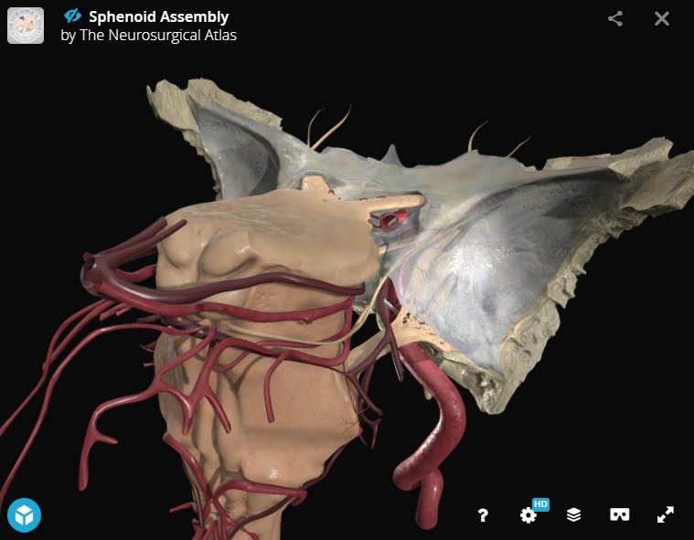 J Neurosurgery On Twitter Neurosurgicalatlas Interactive 3d