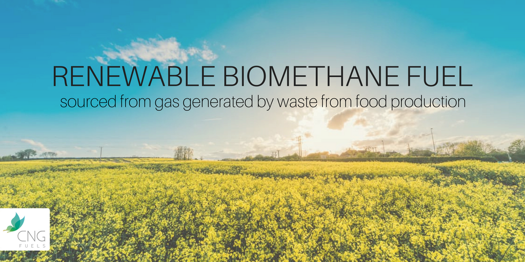 Media Tweets by Biofuelsnet (@NetworkBiofuels) | Twitter