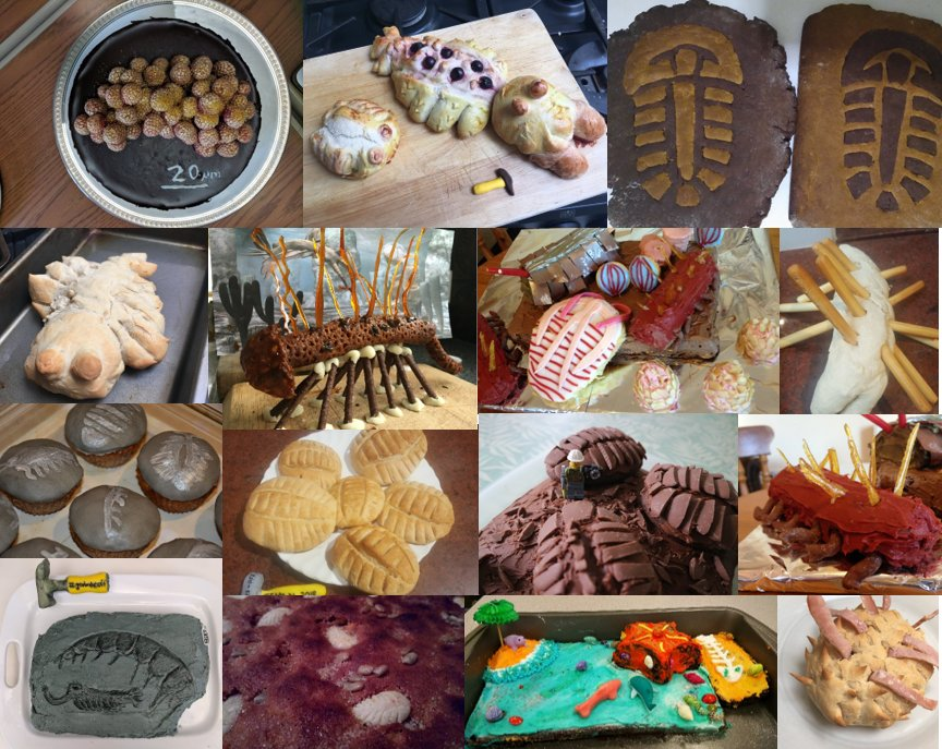 Here is what will henceforth be known as the #BurgessShaleOff in full! #geobakeoff <br>http://pic.twitter.com/GVNSItqMtG