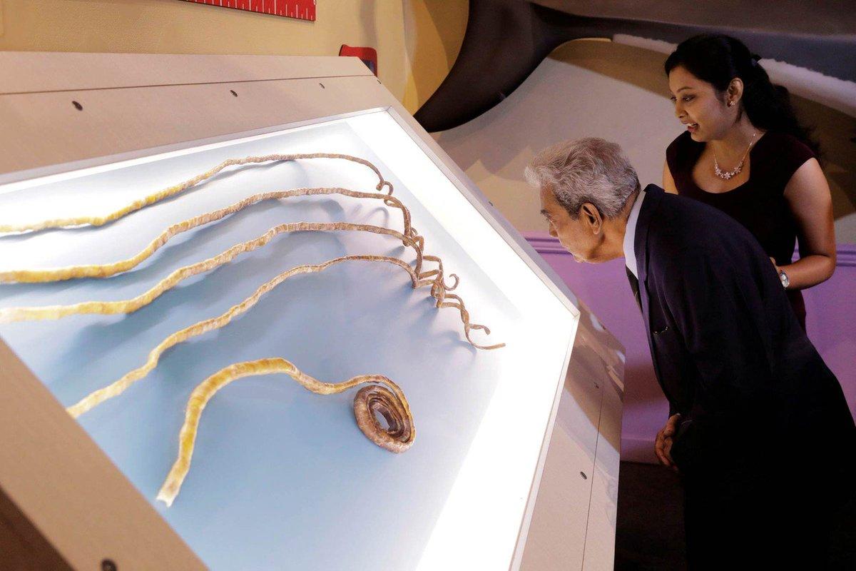 Indiano corta maiores unhas do mundo e expõe em museu de NY https://t.co/5LBhFjFKpp #PlanetaBizarro #G1