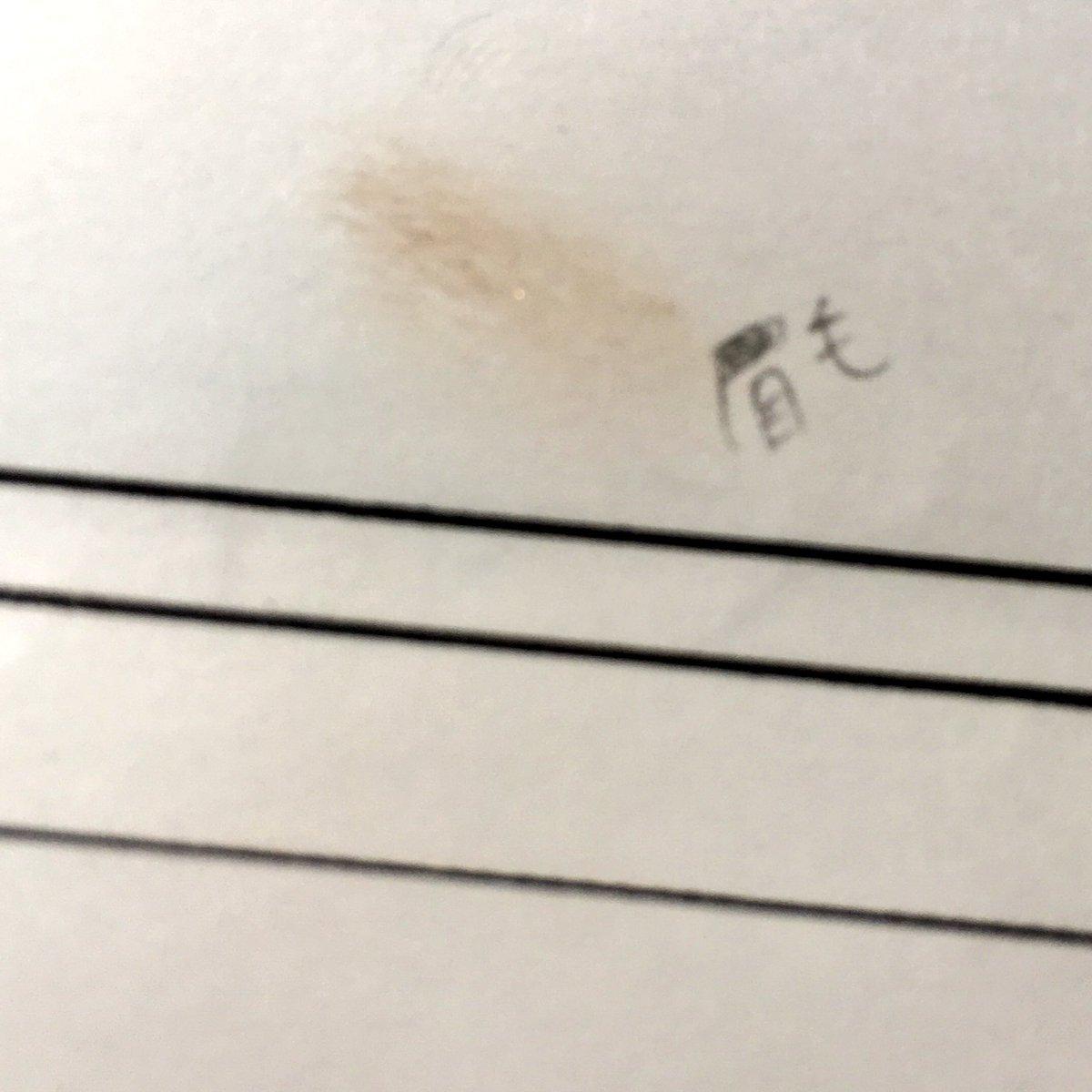 紙を敷いて突っ伏したら眉毛がついた提出用紙(眉の字を間違えている)