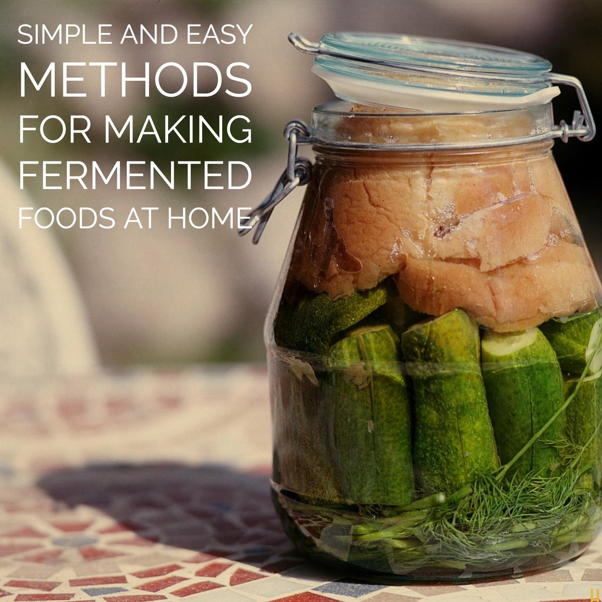 Why #fermented food are a highly effective addition to your diet and create greater vitality, mental clarity and promote weight loss. Learn how in this virtual conference: https://in188.isrefer.com/go/hgmo/IRT