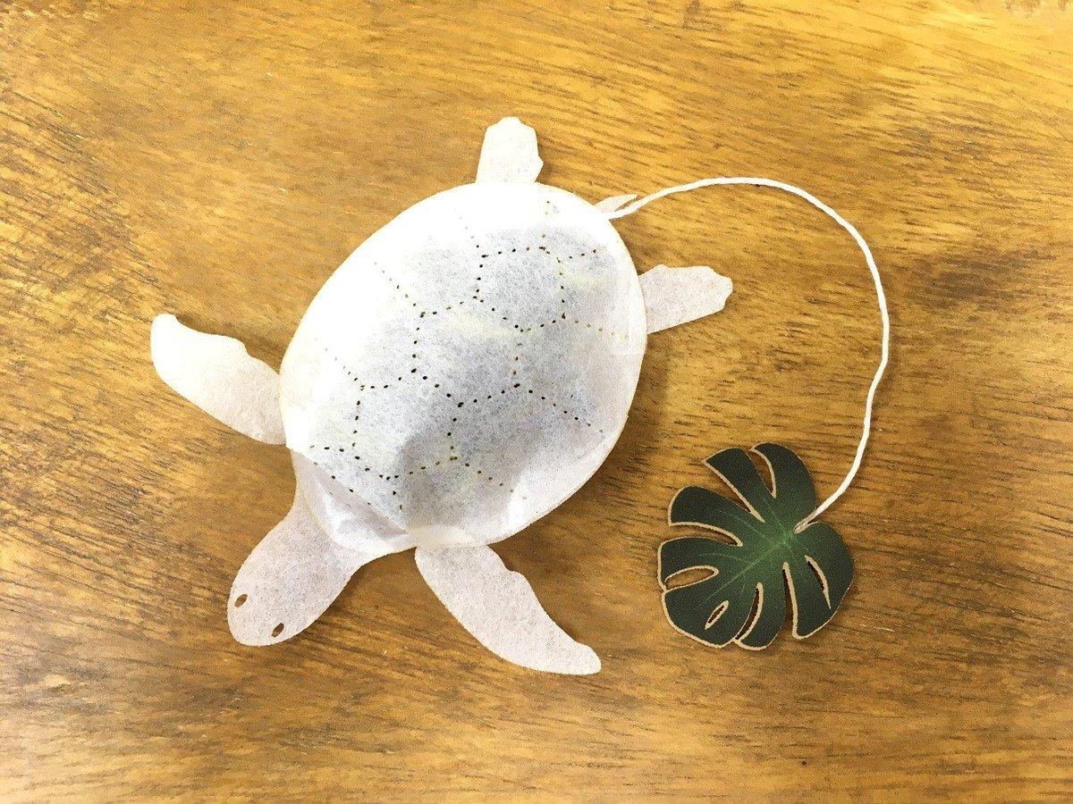 *ウミガメキャンペーン* フォロー&リツイートでウミガメのティーバッグ、 ブルージャスミンティーを4包、抽選で2名様にプレゼント致します。 〆切は明日7/14 23:59となります。