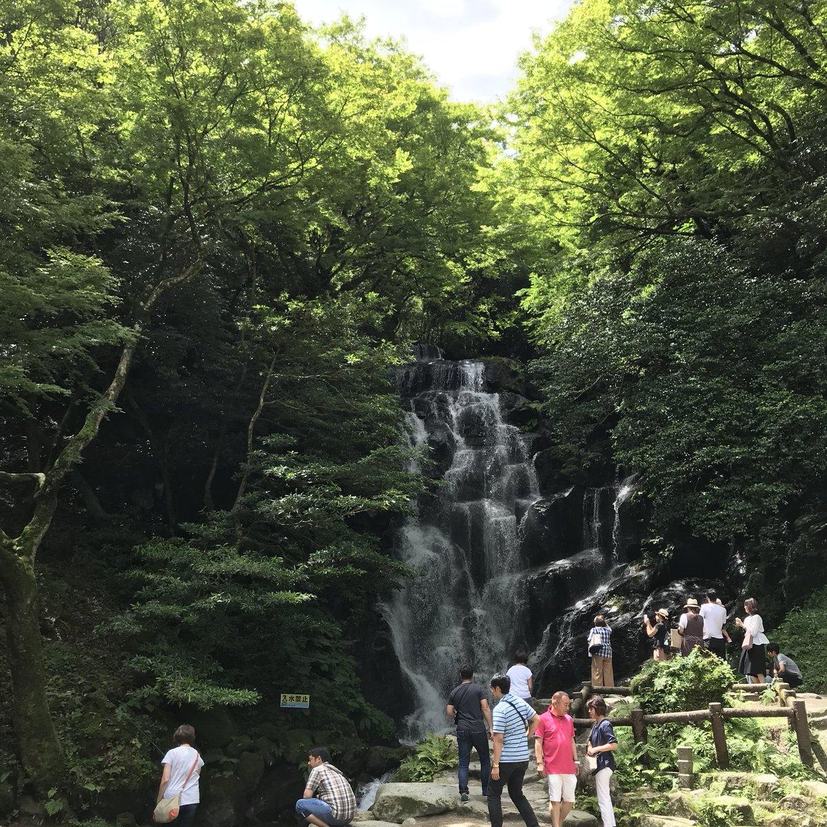昨日福岡の友だちんちに遊びに行き今日は白糸の滝をみてきました 久々に会えてよかったな〜〜滝はとてもきれいで急に真夏が来てヤマメがキラキラしていた おたくが私しかいなかったのでプリキュアが視聴できませんでした