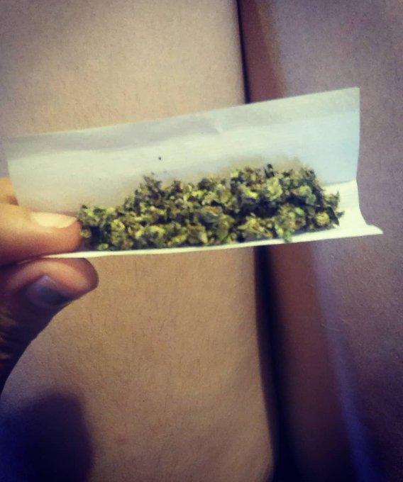 1 pic. Roll it up 🌿 🔥 💨   #medicalmarijuana #MichiganMarijuana #marijuana #smokeweed #420 #420friendly
