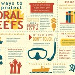 Image for the Tweet beginning: Protecting coral reefs