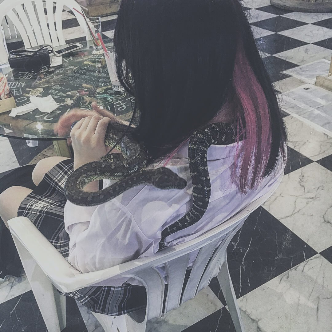 蛇と絡む自殺JKの闇を物語る写真画像