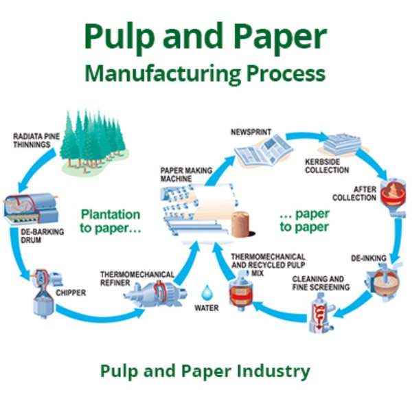 pulp and paper terms The comprehensive list of 521 pulp and paper acronyms and abbreviations by all acronyms dictionary.