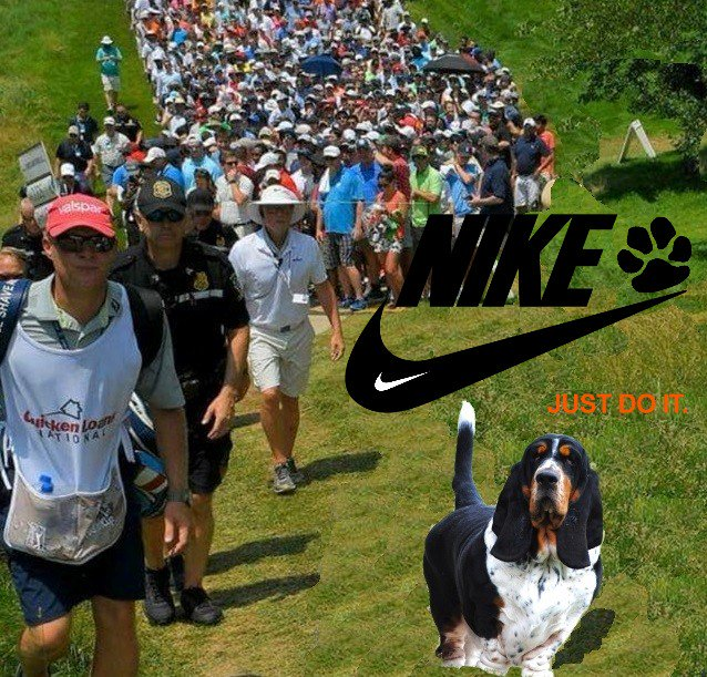 """#dogsoftwitter  #Nike for #dogs welcomes #MocklerBasset  """"BlackJack""""  to #Aaroooo #swoosh #brand  !!<br>http://pic.twitter.com/UoQYHv86to"""