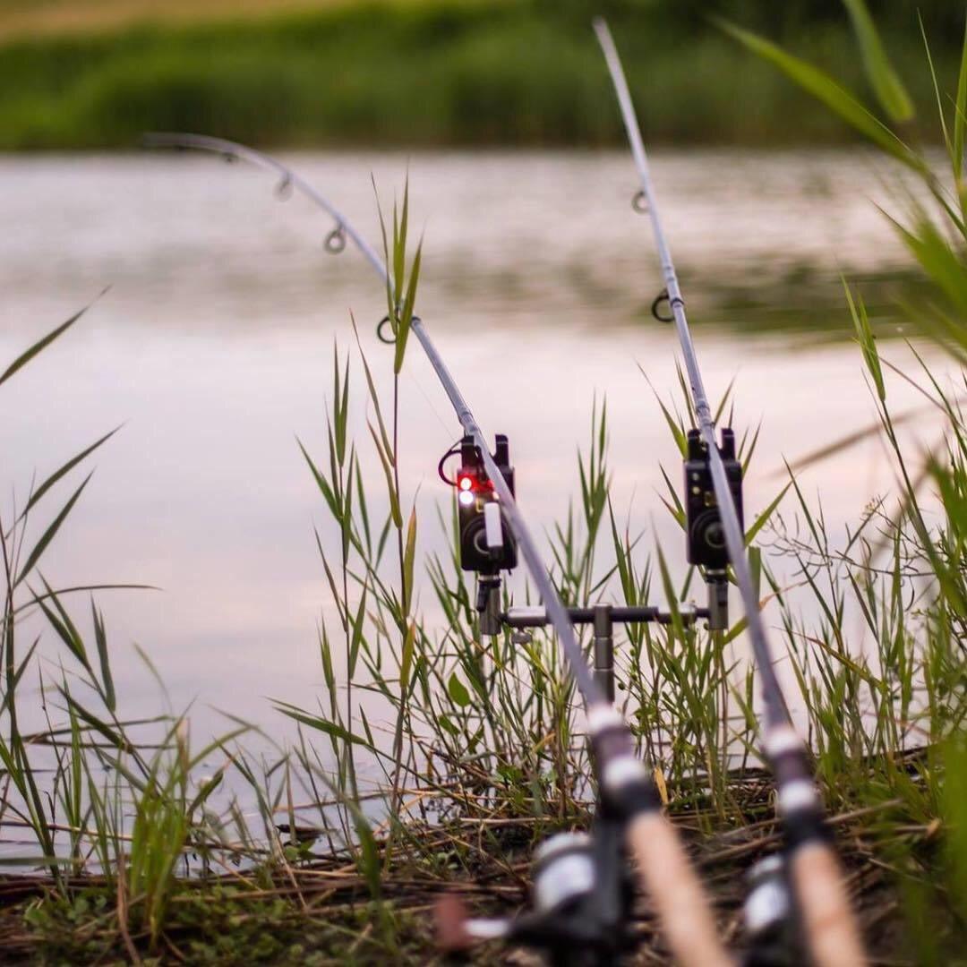 Рыболовные прикольные картинки