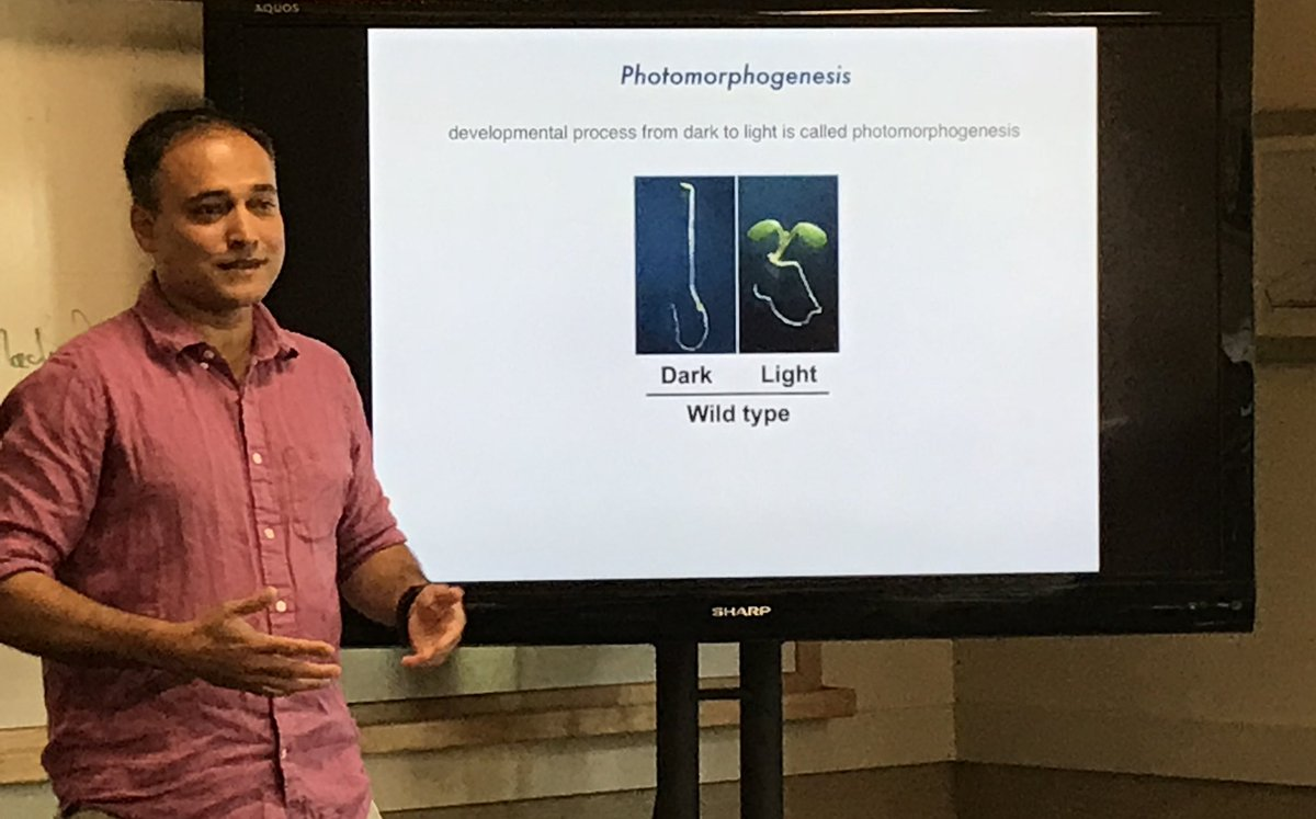 Enlightening local guidance from @UllasPedmale on the spectrum of light regulated processes in plants at @CSHLplantcourse #FTPS18