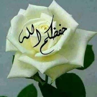 محمد المشهداني Twitterissa أحسنت النشر وصدقت تحياتي