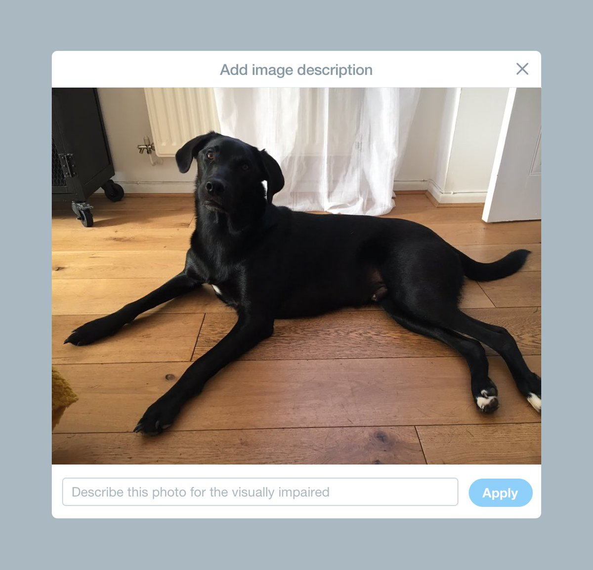 Starting today, people using TweetDeck can add descriptions, also known as alternative text, to images in Tweets. With this update, we're empowering people using TweetDeck to make their Tweets accessible to the widest possible audience.