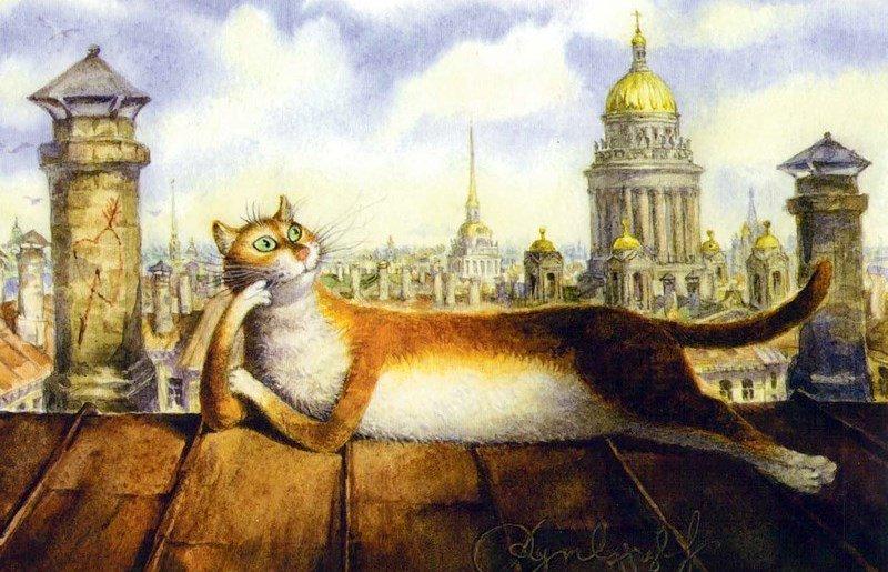 Санкт петербург веселые картинки, картинки коробка