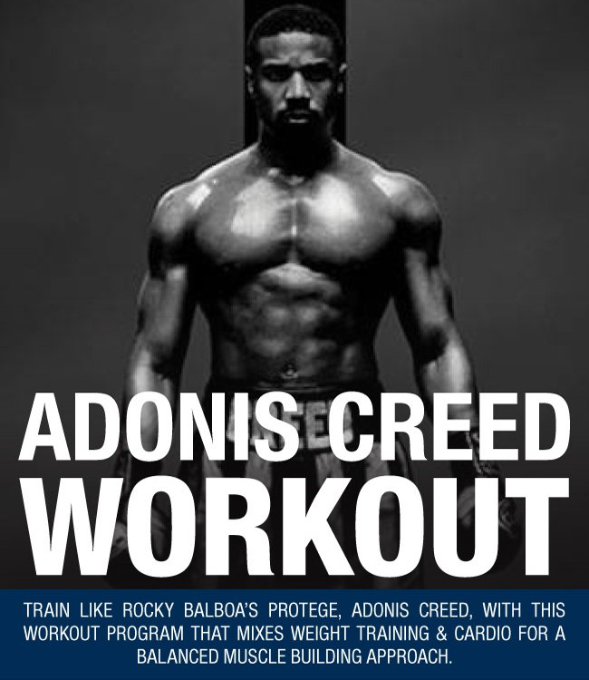 Click through to download PDF!) Have you tried the Creed