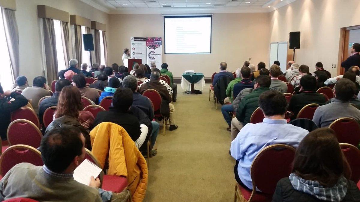El programa @PtiBiobio lleva a cabo el 1er Seminario Nacional de Berries, agrupando a más de 120 productores de arándanos y frambuesas, para mejorar producción, comercialización, calidad y condición de frutas https://t.co/B9prfgPN60