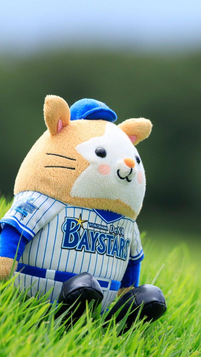 クマ On Twitter スターマン Baystars ベイスターズ 横浜優勝