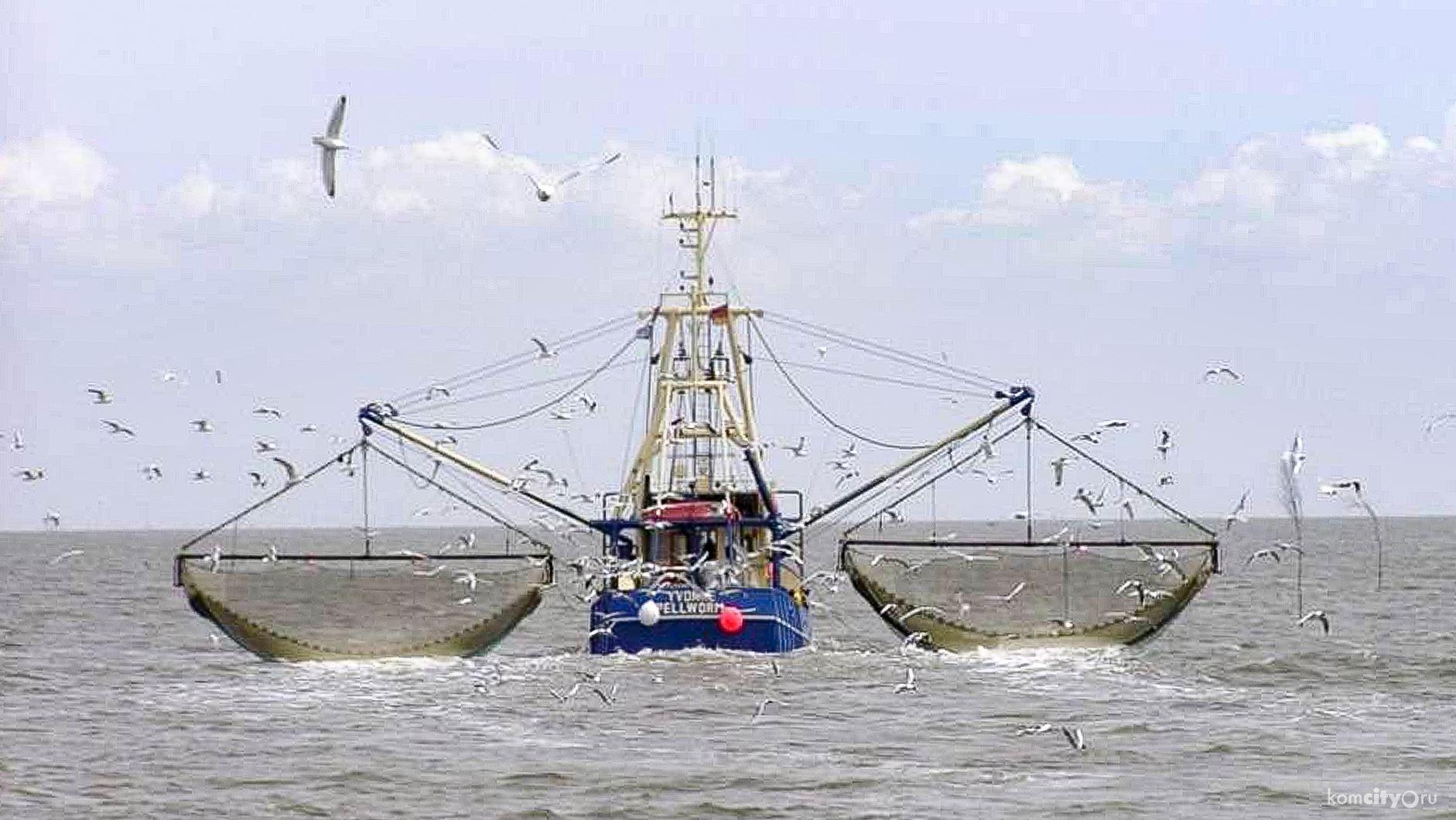 потому картинки судно рыба корабли