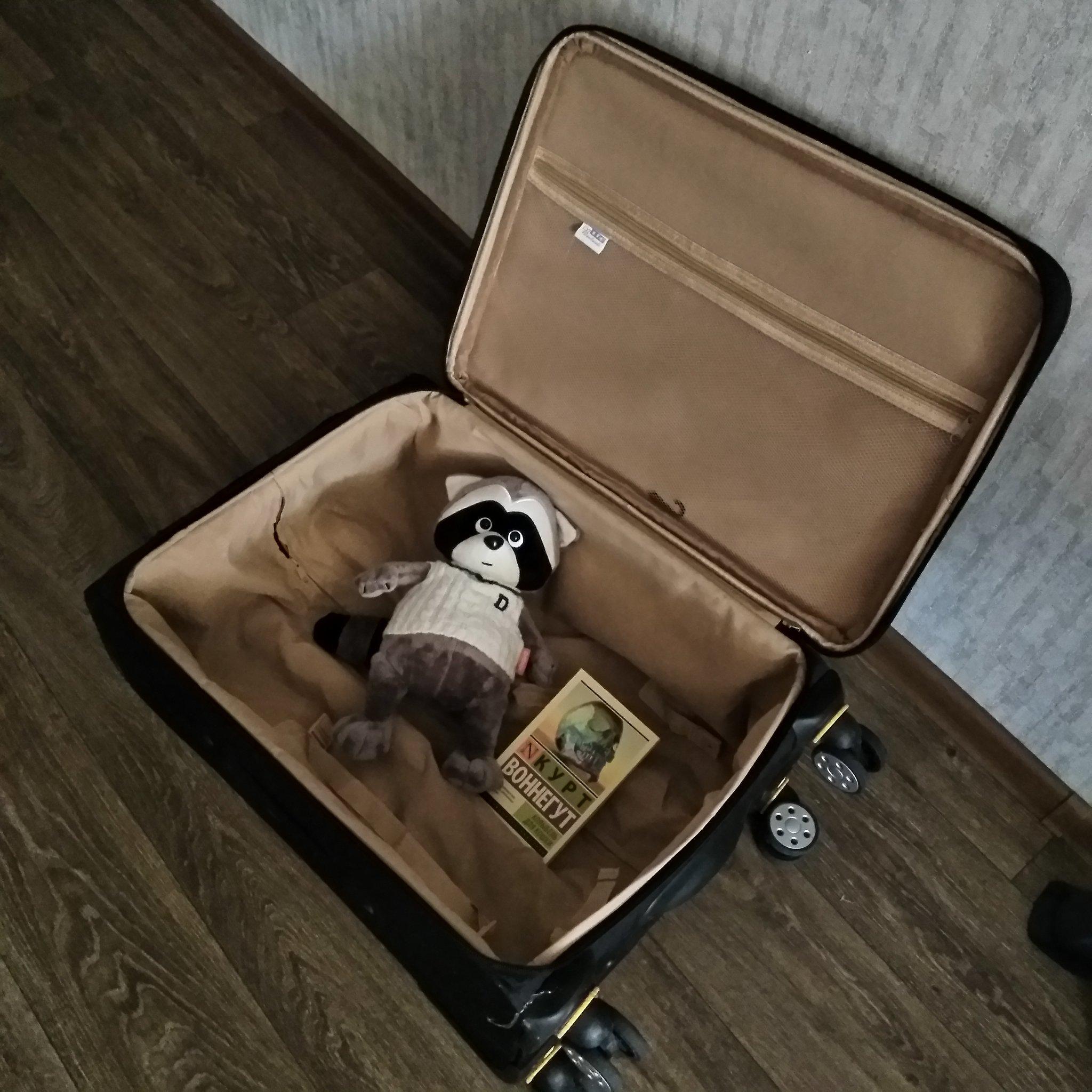 доставка москве смешные фото с чемоданами всегда радовалась спортсменок