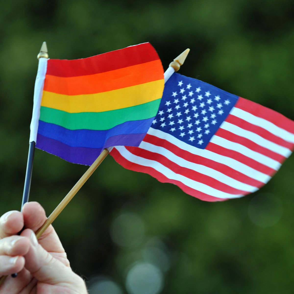 a look at the lgbt community in america In latin america, progressive politics present something of a mystery: as lgbt rights have flourished, women's reproductive rights have floundered.