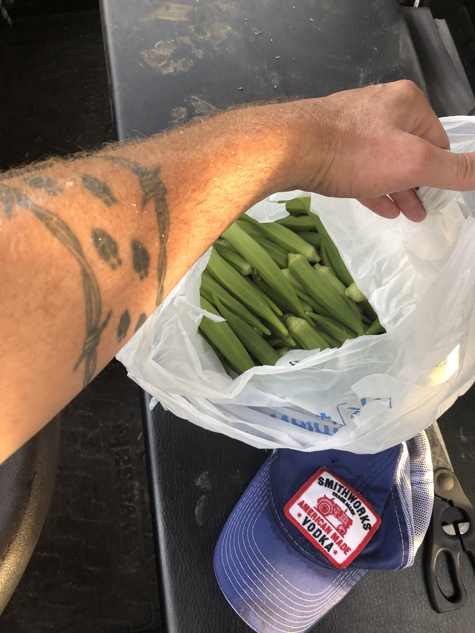 FYI... Wear long sleeves and gloves when picking okra!!!! My god!!! #itchinglikeasomebitch https://t.co/B3vV2BvRay