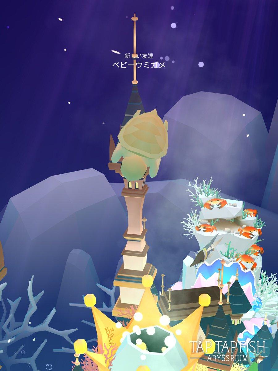 ウミガメ アビスリウム ベビー