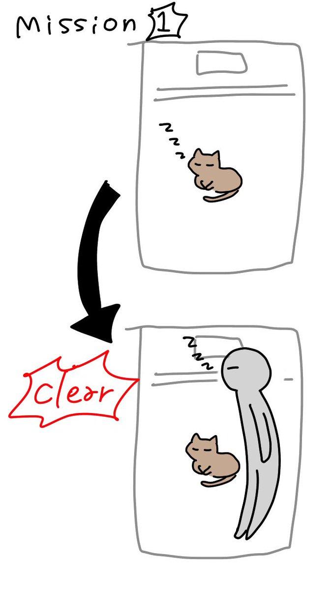 猫が先に布団で寝てた場合の飼い主の寝方各種