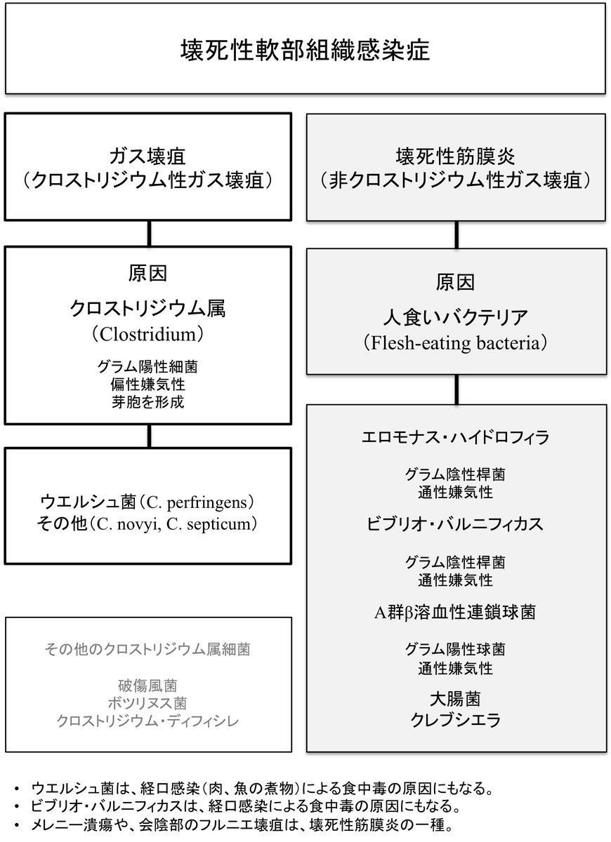 "OJ☆ on Twitter: ""ガス壊疽 グラ..."