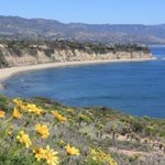Image for the Tweet beginning: Good Morning from #Malibu! It's