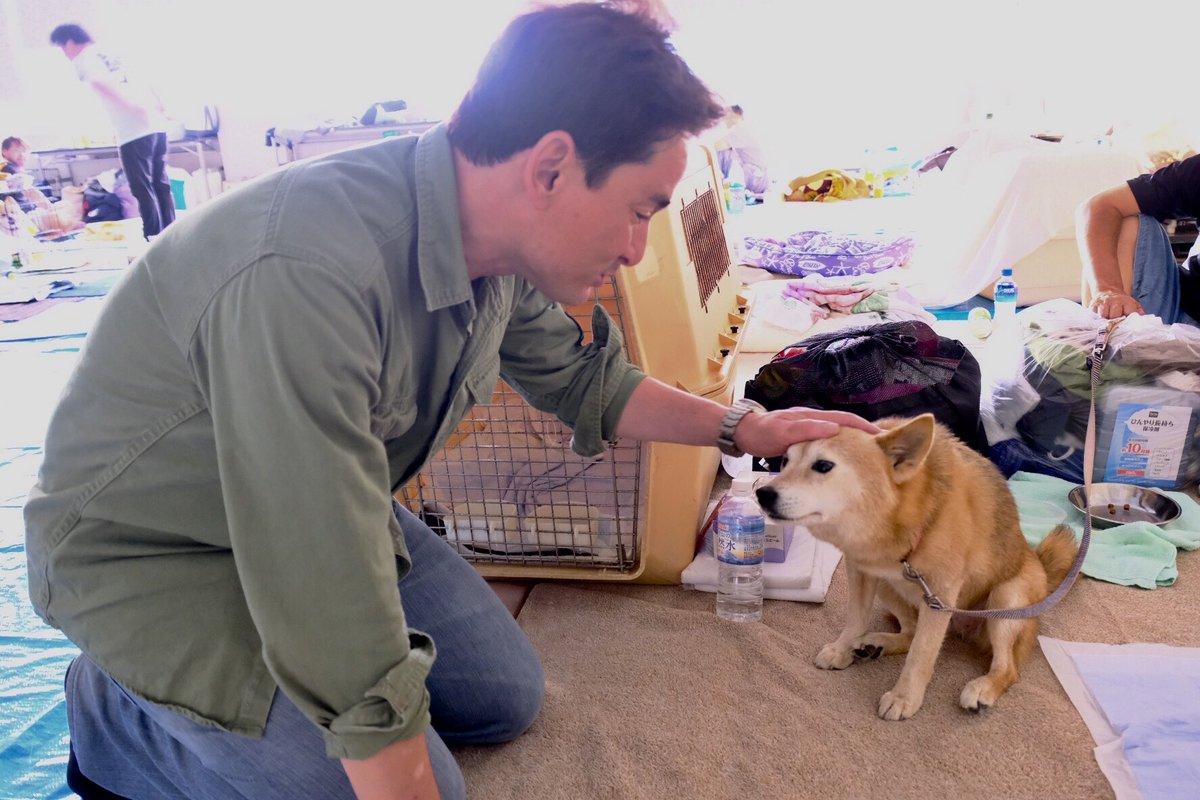 総社市役所本庁の中にはペットと飼主のみなさん専用の避難所も開設。熊本のテント村では原則ペットは認められなかった。片岡市長は「その時の悔しさが忘れられない」と本庁の中にペット専用の避難所を。クーラー付きの会議室が使われているので動物達にとってもストレスがかかりにくい環境。