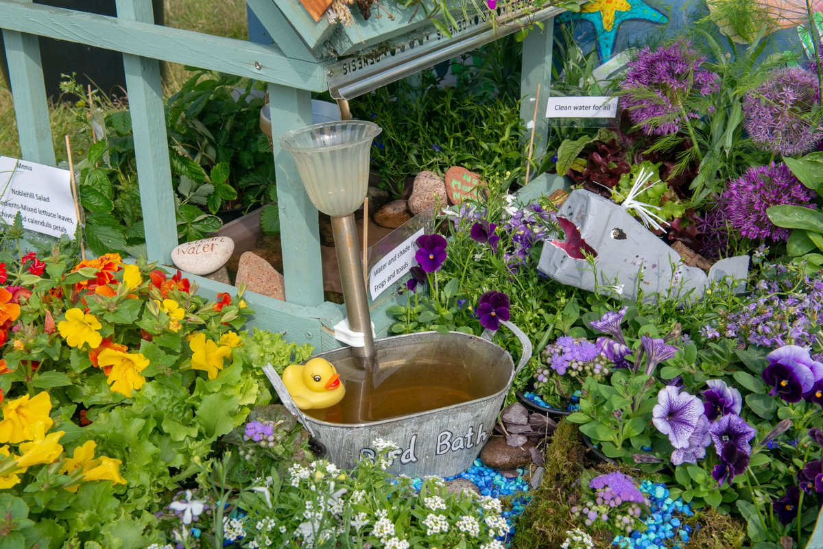 Rhs In The Community A Twitter Gardening With Others In Bonnie Scotland Get Your Creative Juices Flowing Enter Your Pocket Garden Designs In The Dundee Flower And Food Festival With Ksbscotland