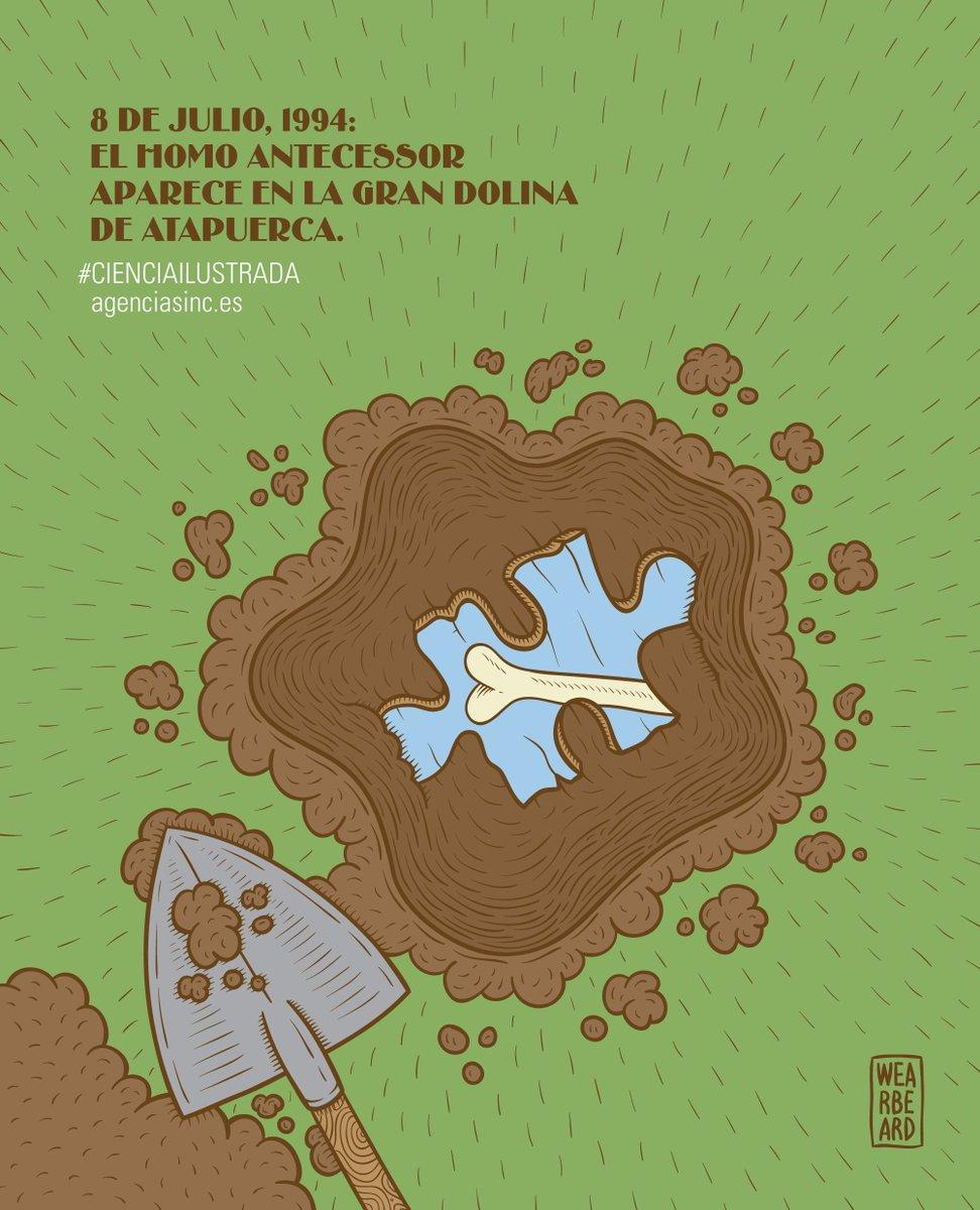 Patas arriba: así quedaron las teorías de la evolución humana tal día como hoy en 1994, cuando se hallaron los primeros restos de Homo antecessor en la Gran Colina de Atapuerca
