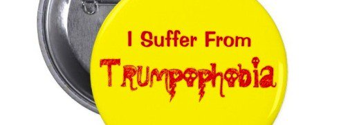 Image result for trumpophobia