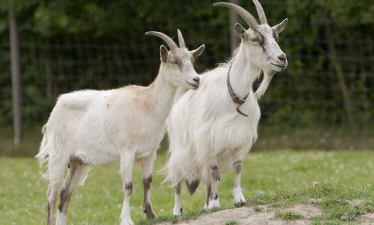 Rare picture of Future & Zaytoven at the studio recording #BEASTMODE2 https://t.co/WeSl4oXYSQ